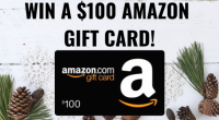 4 Gift Rule Holiday $100 Gift Card Giveaway - Wealthy Nickel